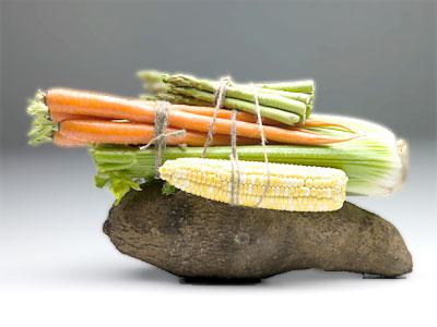 spectrum-diet