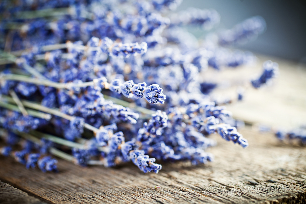 Using Lavender for Skincare