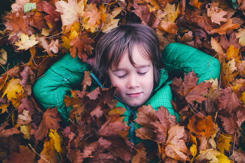 Boosting Health in the Fall
