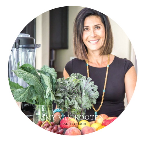 Amy Van Kooten Functional Holistic Health Coach