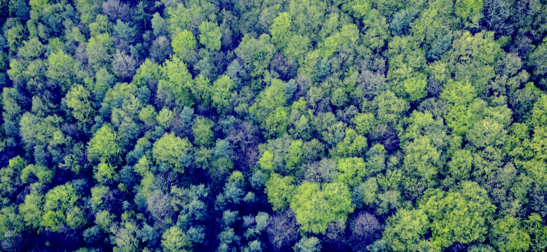 Agnihotra Environmental Answer