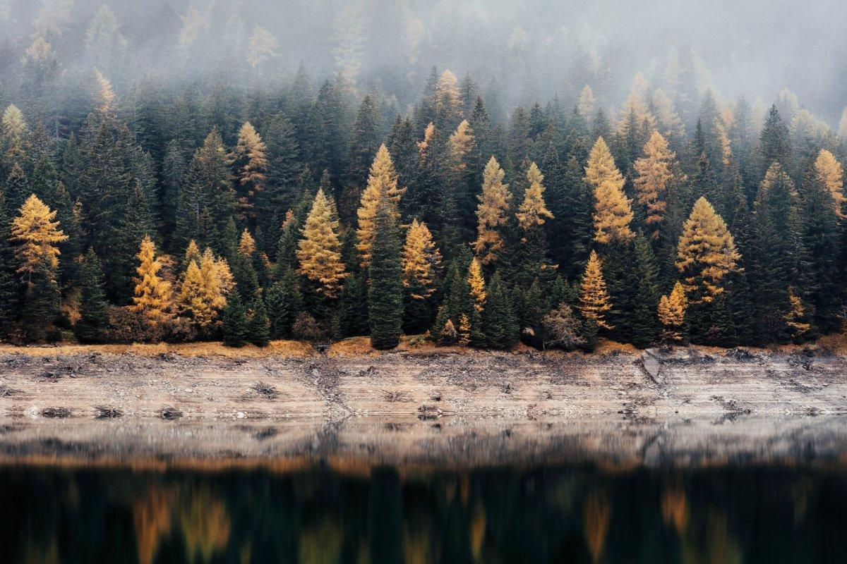 hello autumn phtoo by samuel ferrara