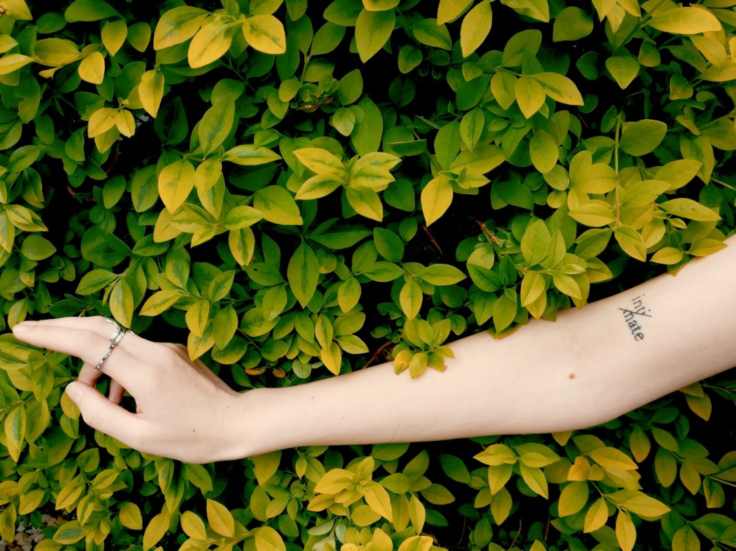 woman's arm in front of leaves innocent intimacy