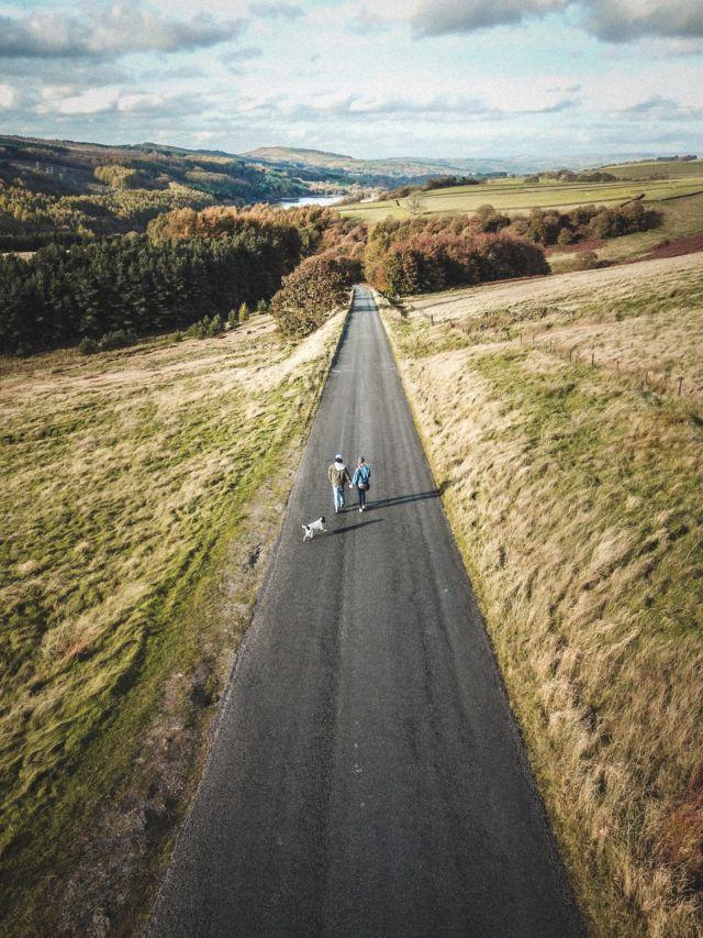 the middle path photo by rebecca georgia
