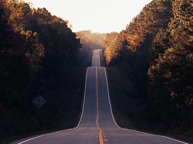 autumn-grief-lungs-large-intestine-energy-photo-by-matt-duncan